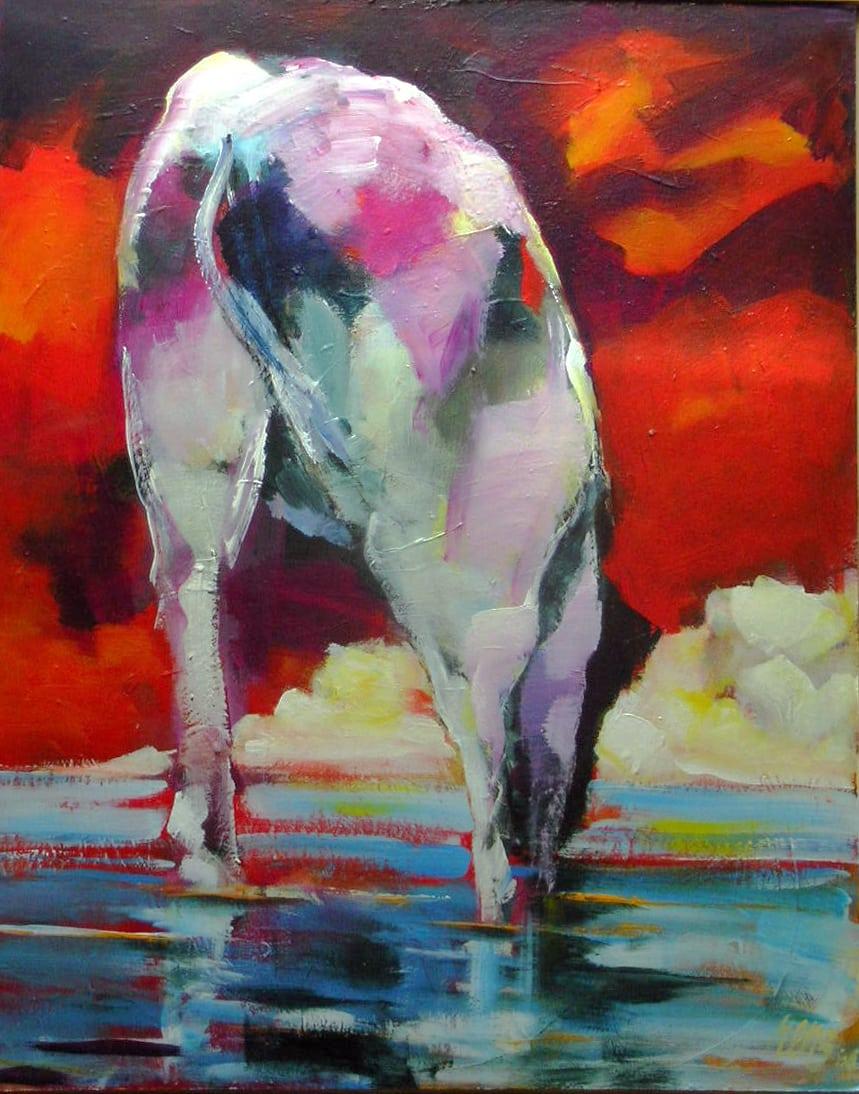 Koe in zee