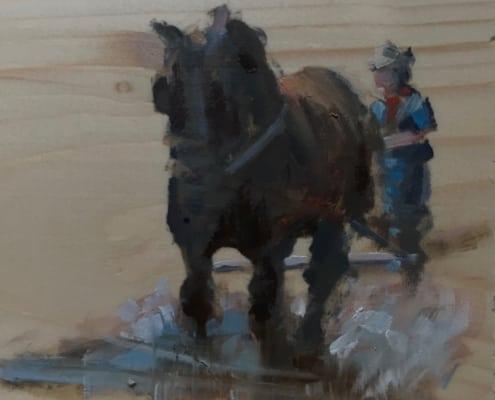 Ploegpaarden